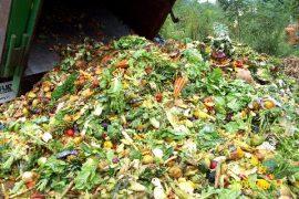 landfill-food-waste-live-circular